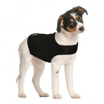 Contech Zendog Calming Compression Shirt